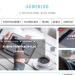 AcmeBlog Theme