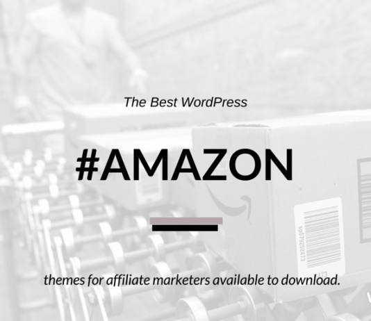 Best Amazon Affiliate WordPress Themes (2019 Compared)