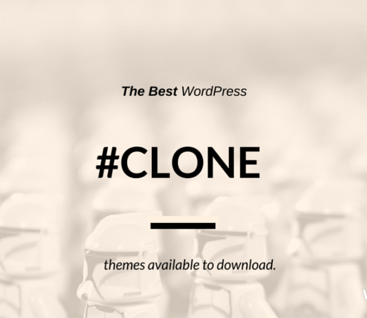 Best Fiverr Clone WordPress Themes (+ Groupon & Huntington post more)
