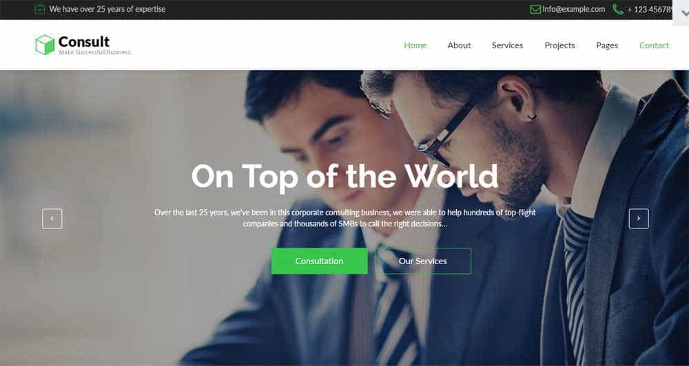 Consult Muse Template