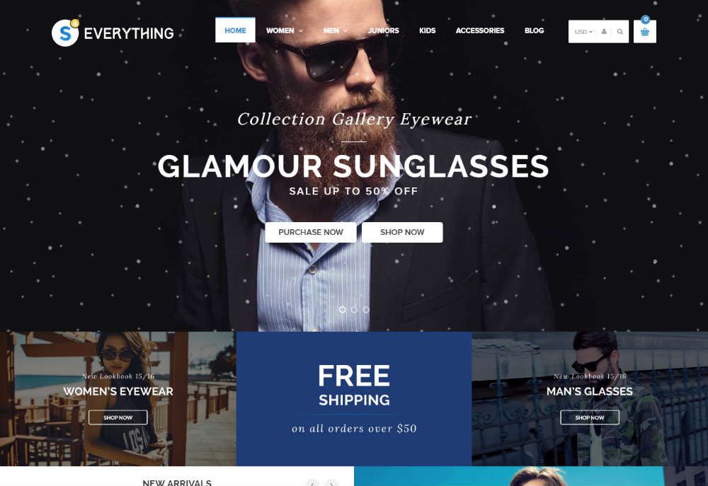 Everything Shopify Theme