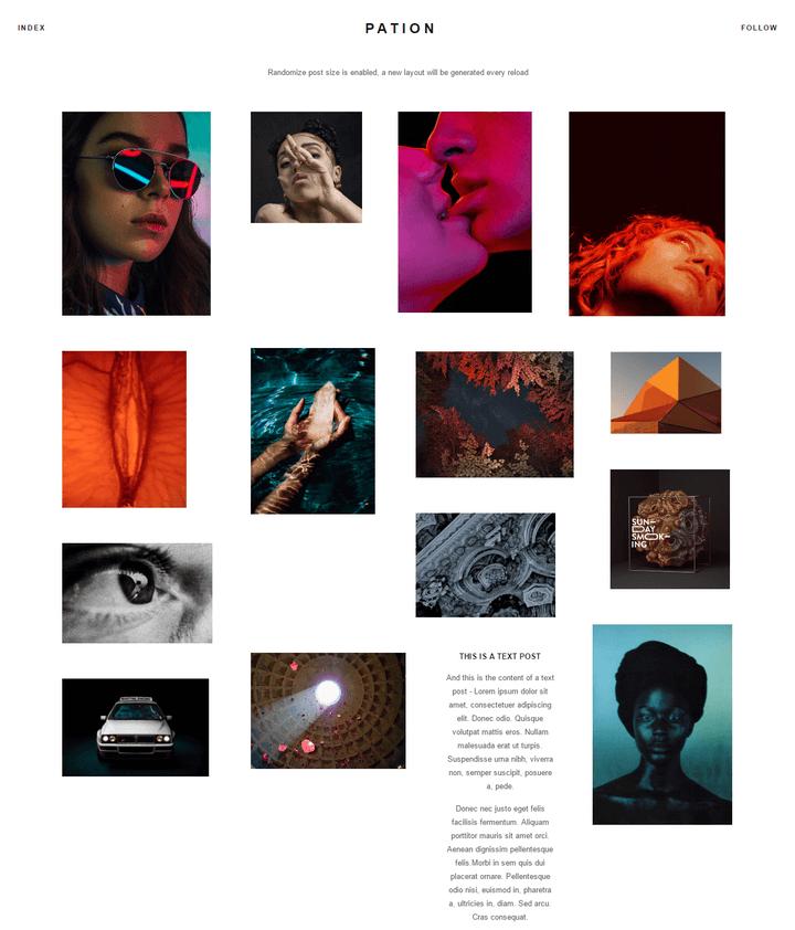 Pation Tumblr