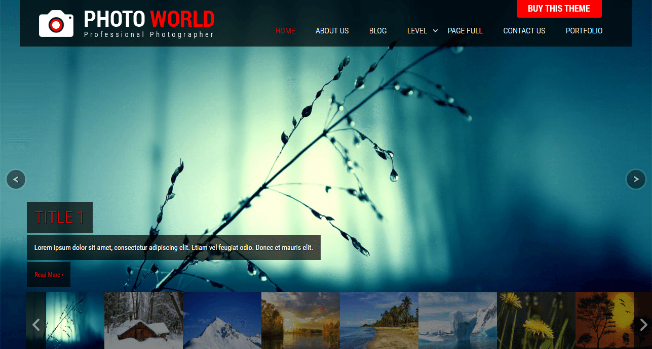 SKT Photo World Theme