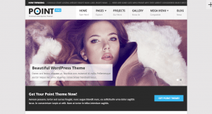 Point Pro WordPress Theme Download & Review 2019