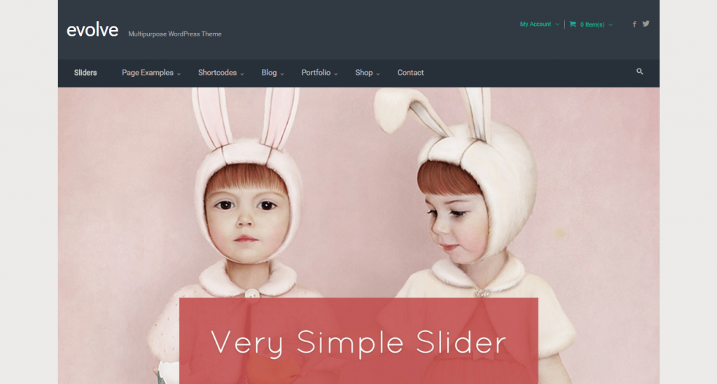 evolve buddypress theme