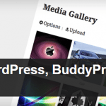 rtMedia for WordPress, BuddyPress and bbPress