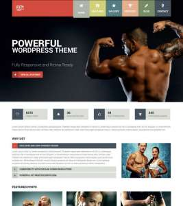 top-5-sports-WordPress-theme-fit