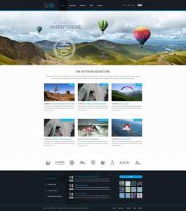 top-5-sports-WordPress-theme-hobby