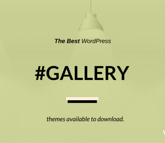Best WordPress Gallery Themes 2018
