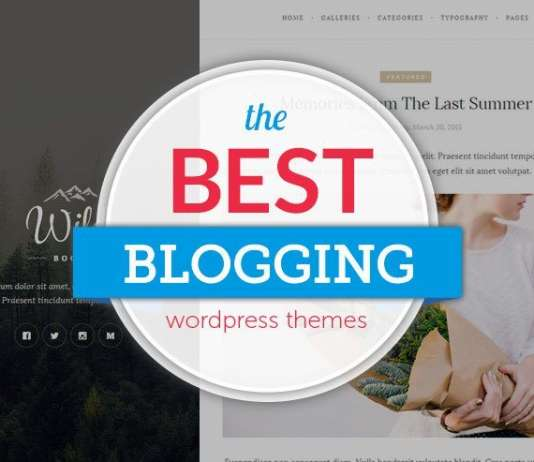 Best Free Personal Blog WordPress Themes 2019
