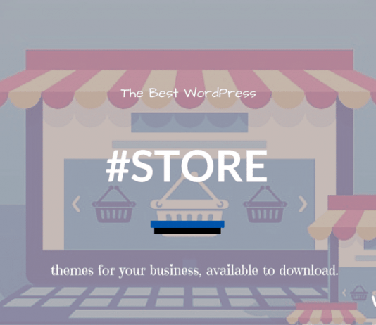 WordPress Store Themes 2018